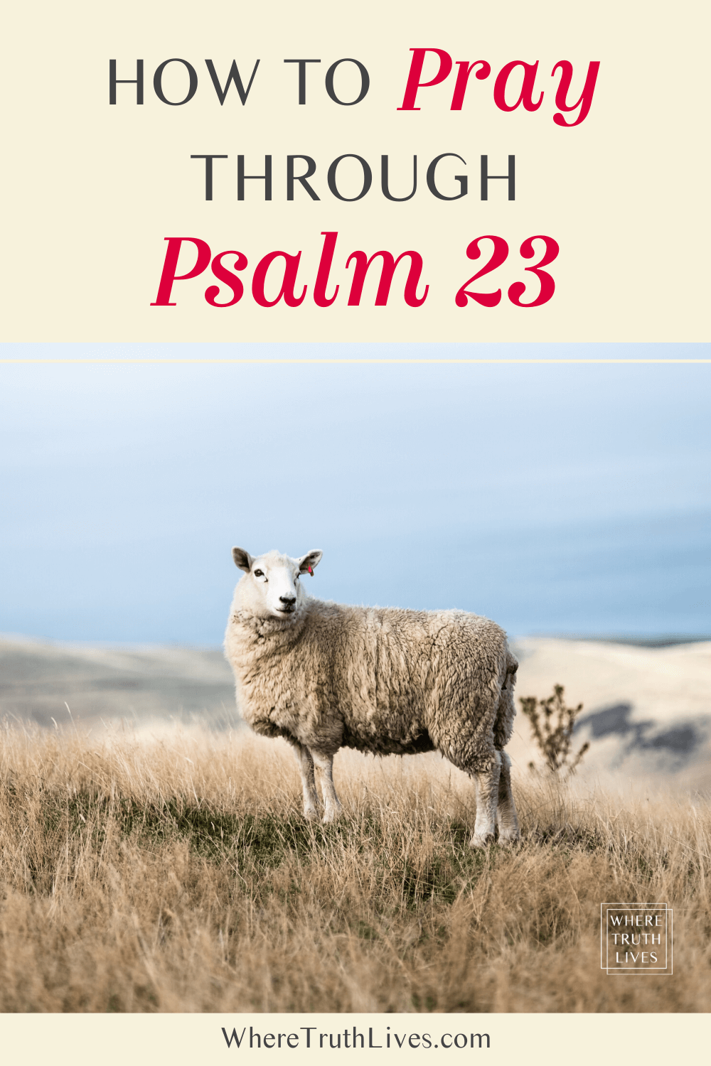 How To Pray Through Psalm 23