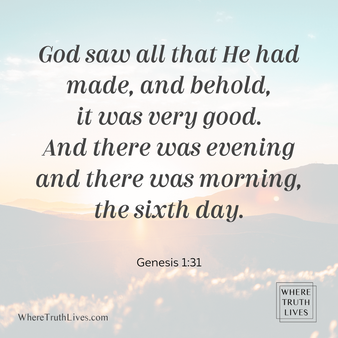 God saw all that He had made, and behold, it was very good. And there was evening and there was morning, the sixth day. (Genesis 1:31)