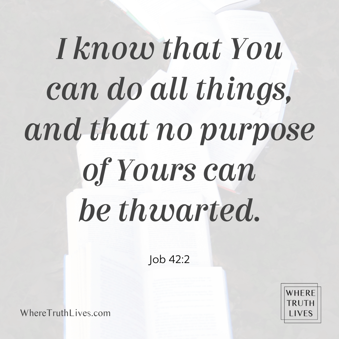 I know that You can do all things, and that no purpose of Yours can be thwarted. (Job 42:2)
