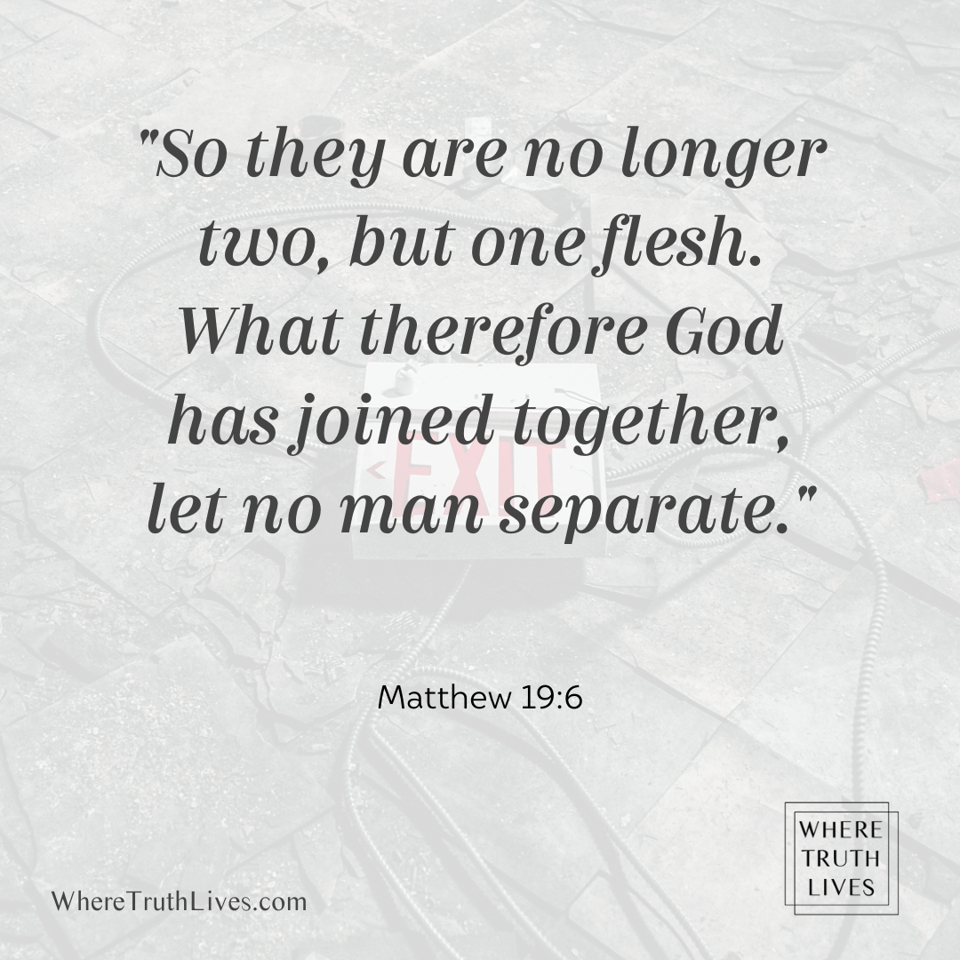 So they are no longer two, but one flesh. What therefore God has joined together, let no man separate. (Matthew 19:6)
