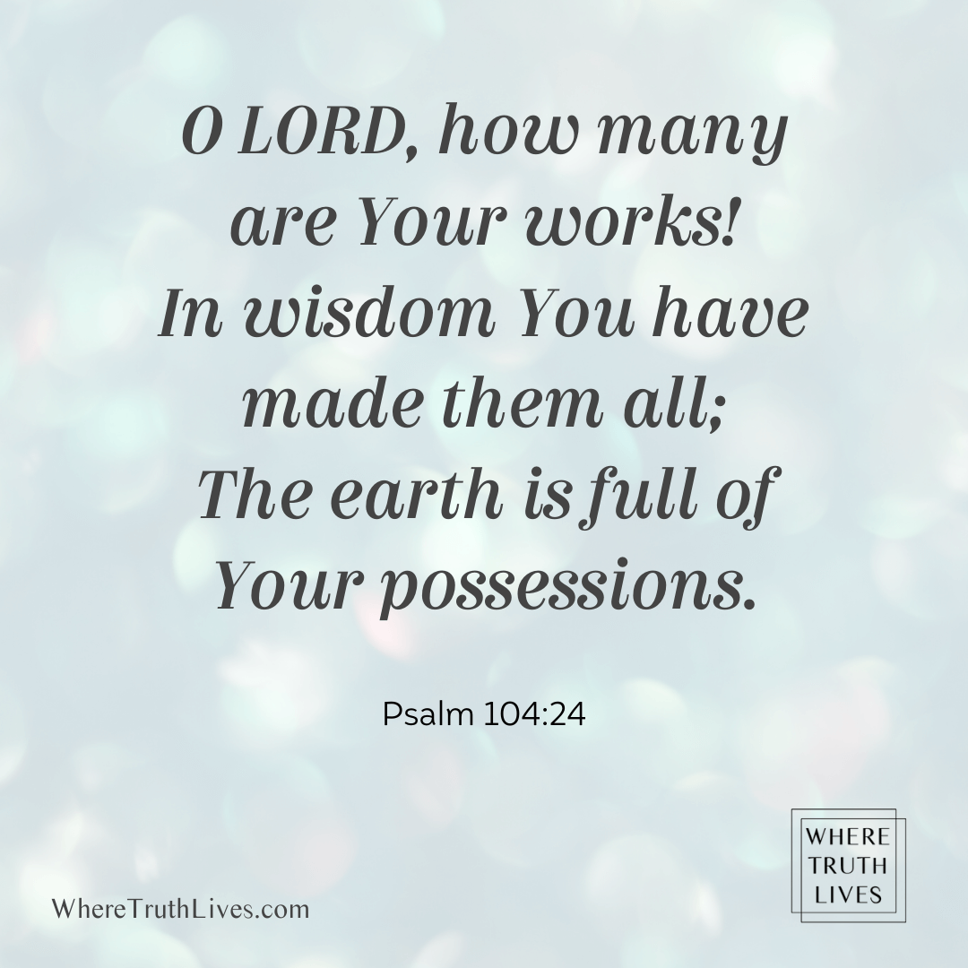 O Lord, how many are Your works! In wisdom You have made them all; The earth is full of Your possessions. (Psalm 104:24)
